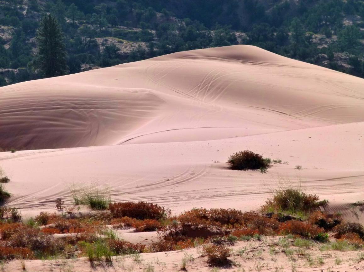 Песчаные дюны в Фанранг