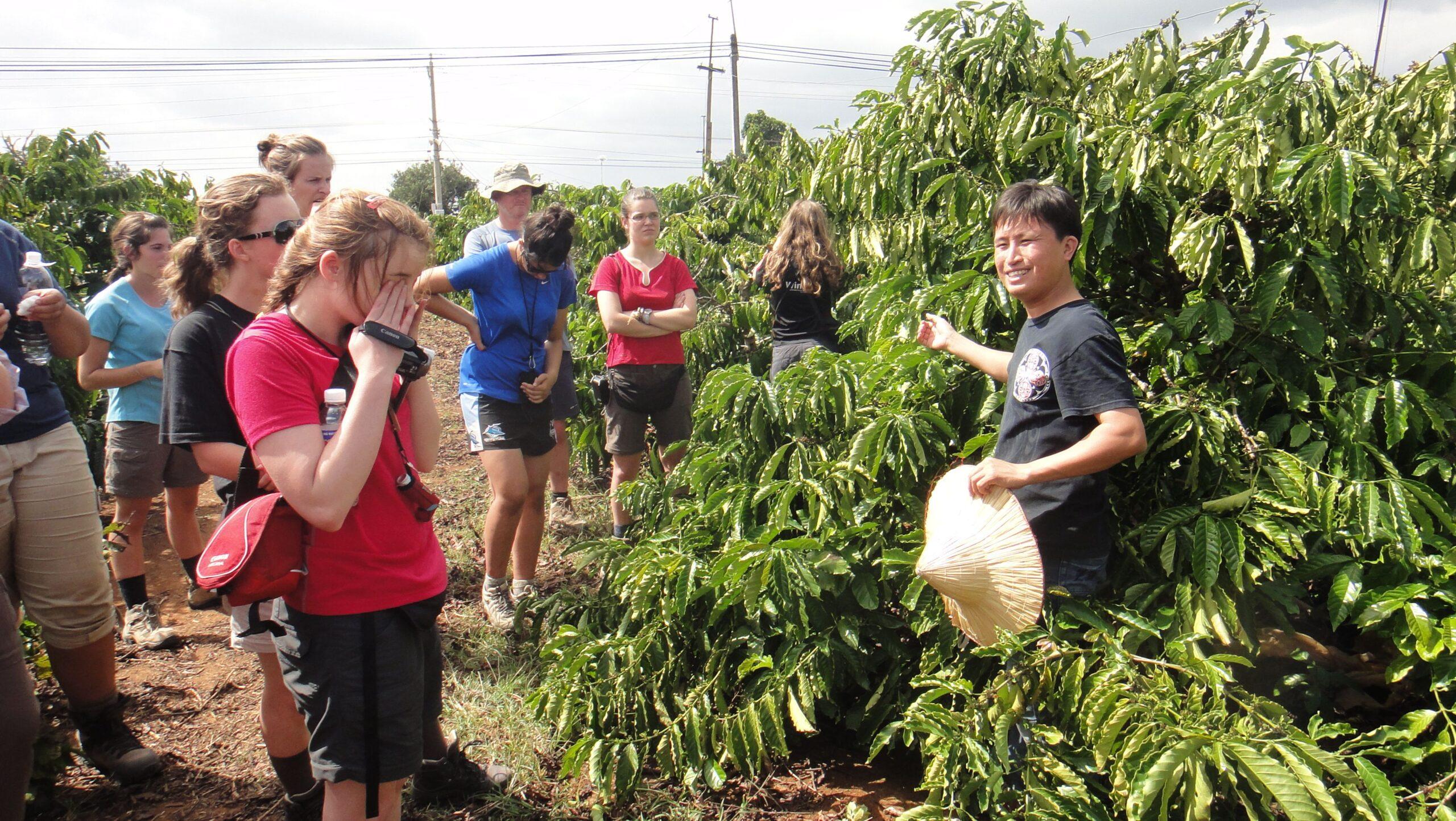 Фото экскурсии на кофейную плантацию