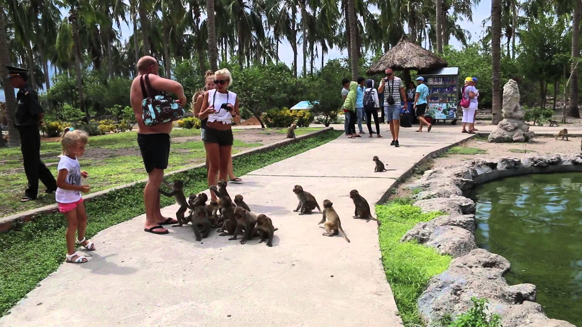 Фото острова обезьян в Нячанге
